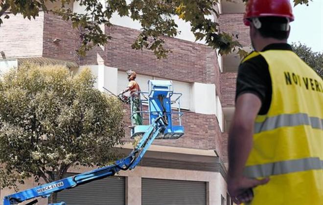 NOU VERD SCCL.La cooperativa social de Vilafranca del Penedès ofrece sus servicios de jardinería y mantenimento.