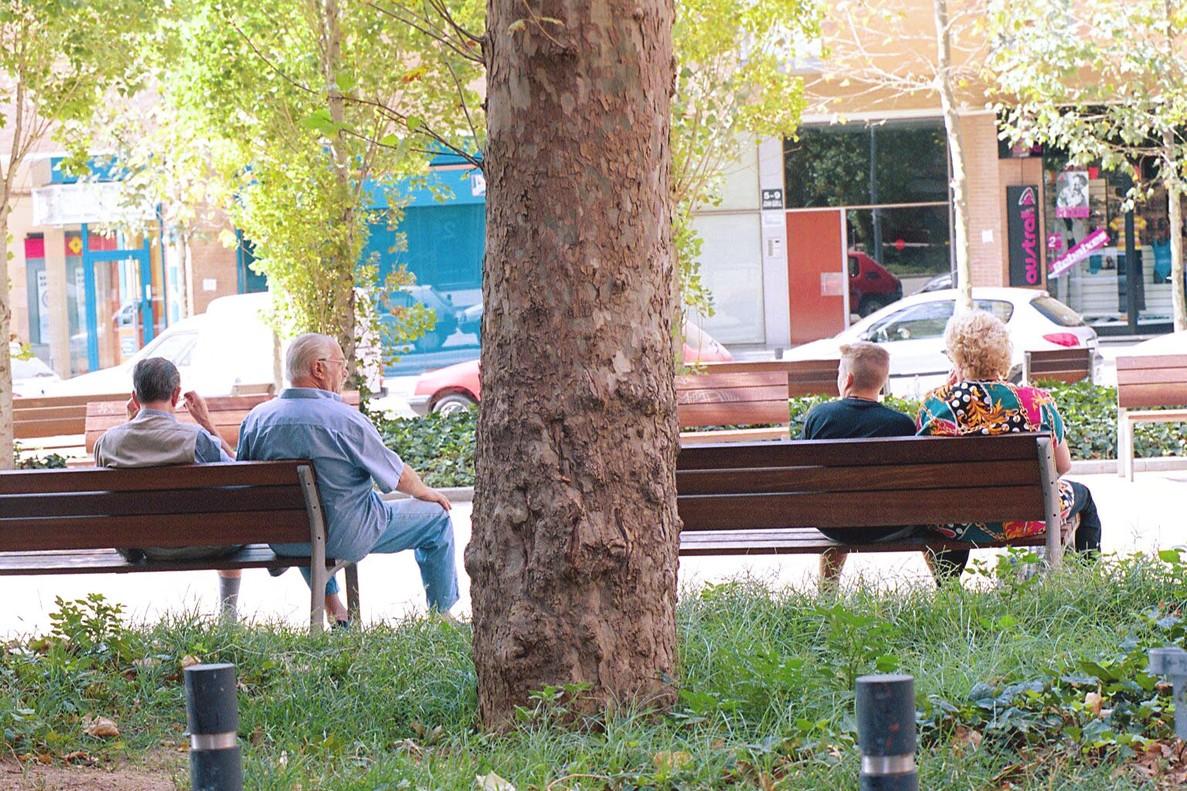Dos parejas descansan en unos bancos a la sombra de un pl�tano, en Barcelona.