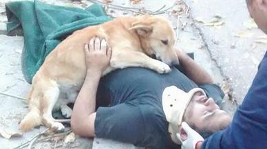 Un perro permanece enganchado a su propietario, tendido en el suelo