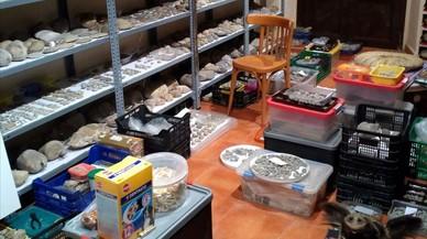 Detinguts dos veïns d'Amer per espoliar jaciments arqueològics