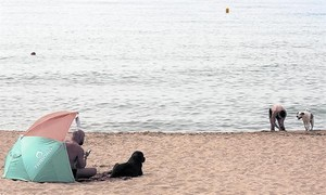El área para perros de la playa de Llevant, en el barrio de Diagonal Mar i el Front Marítim del Poblenou.