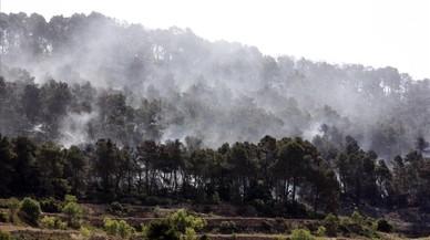 Comença la prohibició de fer foc al bosc a Catalunya
