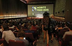 moritz-feed-dog