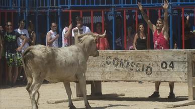 Els taurins fan pinya a l'Ebre en defensa dels correbous