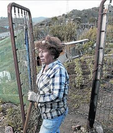 Montcada afirma que desconoce que las barracas están habitadas - El Periódico