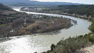 El Ebro, ya fuera del cauce, a la altura de Flix, hoy a las cuatro de la tarde.