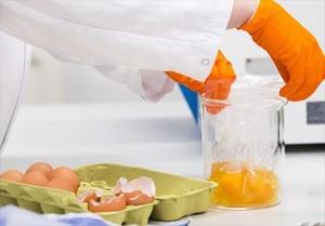 Análisis de huevos contaminados.