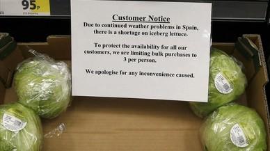 Els supermercats britànics racionen els enciams espanyols per les gelades