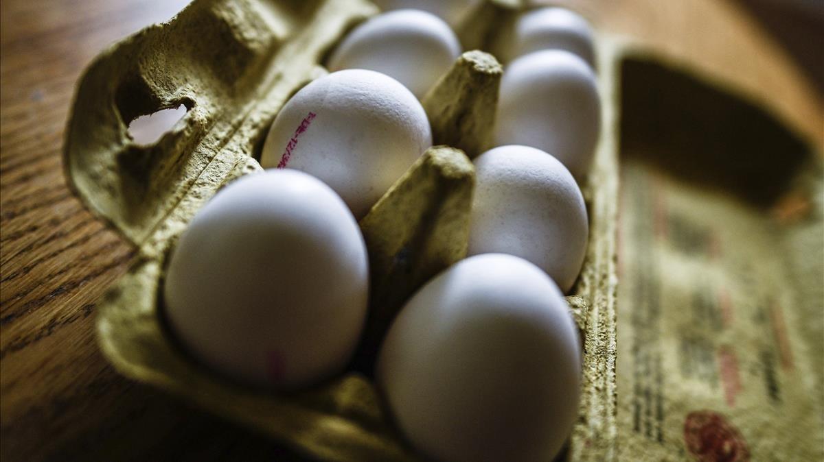Huevos en su caja en Dresde, Alemania.