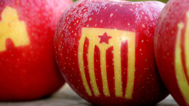 Empieza la recogida de las manzanas con el tatuaje de la 'estelada'.