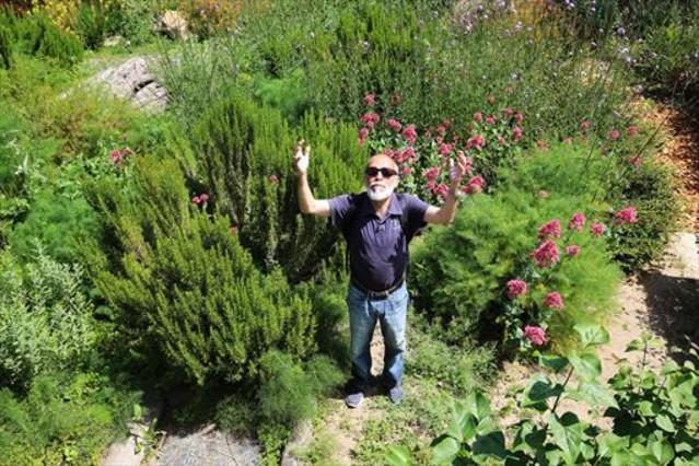 Empieza el traslado del jard n de la biodiversidad de joan for Jardin xavier