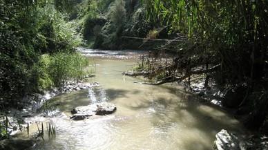 Un contaminante prohibido hace 10 años sigue presente en los ríos europeos