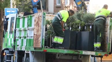 La Guardia Urbana retira a la fuerza terrazas en la calle de Mandri