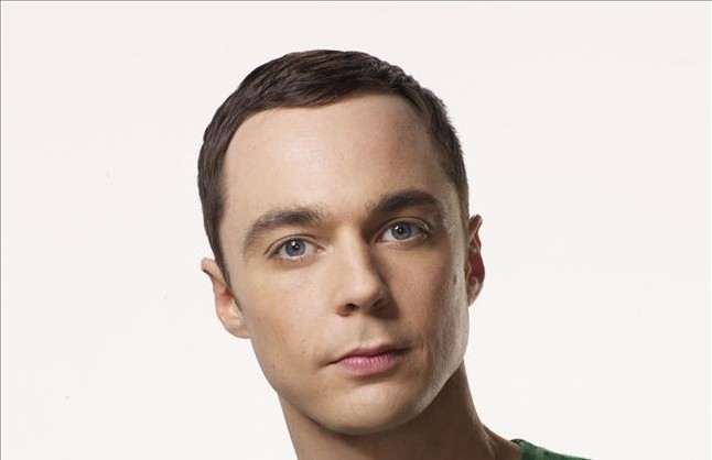 Sheldon, de 'The big bang theory', inspira el nombre de una abeja