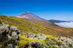 20 Parques Naturales que hay que visitar en primavera