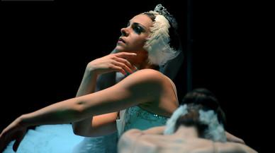 El Ballet de Moscou torna a Terrassa amb 'El llac dels cignes'