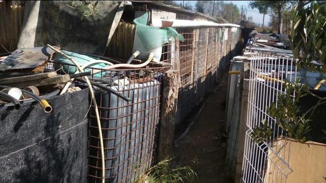 Las precarias instalaciones donde se encontraban los animales, en un huerto en Vilafranca del Pened�s.