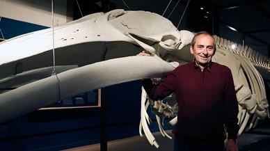 «Al ver la ballena pensé: 'Esto hay que guardarlo'»