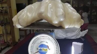 Localitzada a les Filipines una perla de 34 quilos