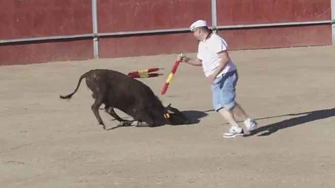 El PACMA denuncia la crueltat de les curses de vedells d'un poble de Toledo