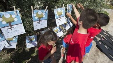 L'olivera dels refugiats
