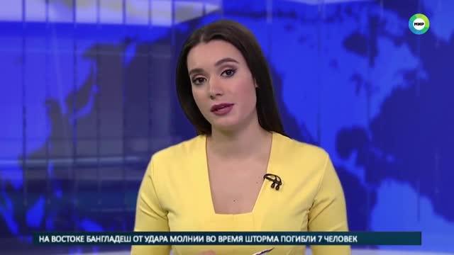 Un gos entra en un plató de televisió rus durant una emissió en directe