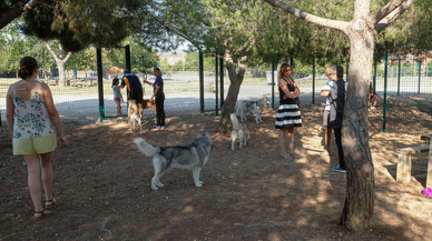 Sant Boi estrena una zona d'esbarjo per a gossos
