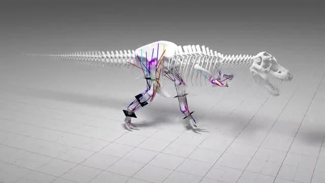 Tyrannosaurus Rex no pot córrer