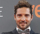 El cantant David Bisbal en la segona edici� dels Premis Plat� del Cine Iberoameric�, el juliol passat, a M�laga.