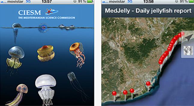 Una aplicaci� m�bil avisa si hi ha meduses a les platges de Barcelona