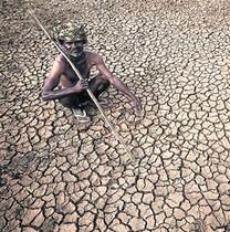 Sequía 8 Un granjero en sus sedientas tierras en Gauribidamur.
