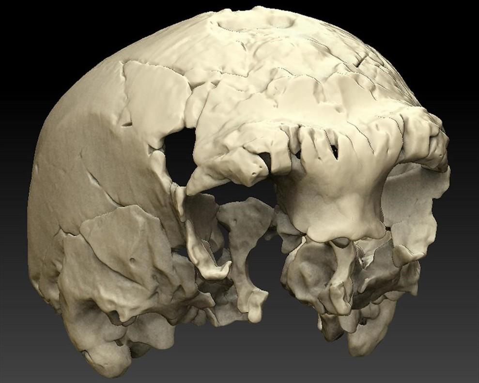 Descubierto en Portugal un extraño cráneo humano de hace 400.000 años