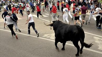 'Encierro' alternatiu al Toro de la Vega 2016 de Tordesillas: així ho hem explicat