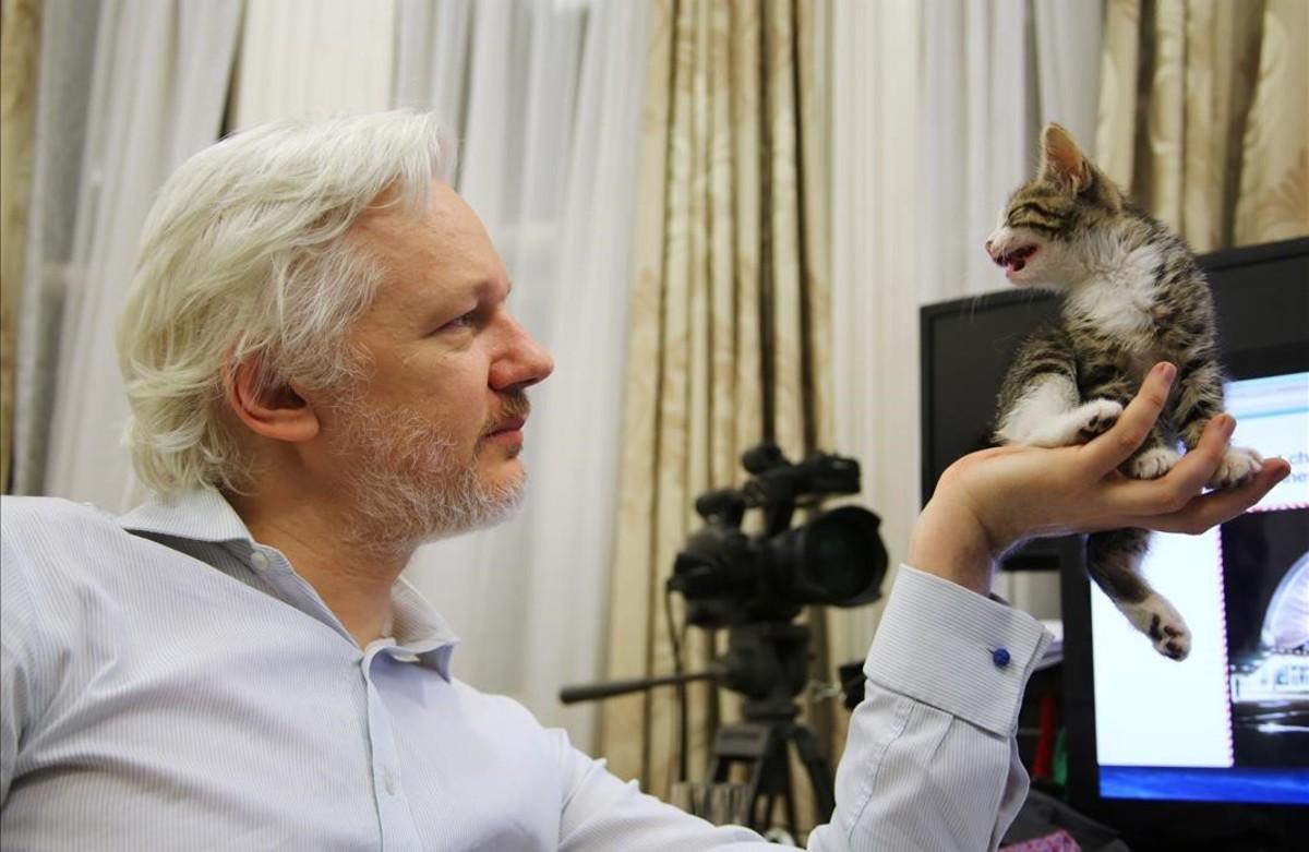 El fundador de WikiLeaks, Julian Assange, sostiene su nuevo gatito en la Embajada ecuatoriana en el centro de Londres.