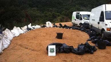 El depósito ilegal con cadáveres de perros y gatos localizado en la cala Salionç, en Tossa de Mar.