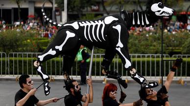 Día de Muertos 2017: ¿Qué simboliza el perro en el mundo de los muertos?