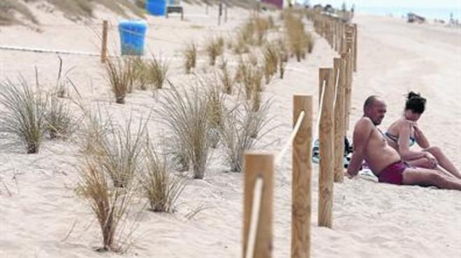 Zona acordonada. Barrones plantados a lo largo de una duna de la playa de Gav�
