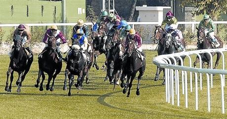 Y�queis y caballos, en plena acci�n en una carrera disputada en el hip�dromo de La Zarzuela de Madrid.