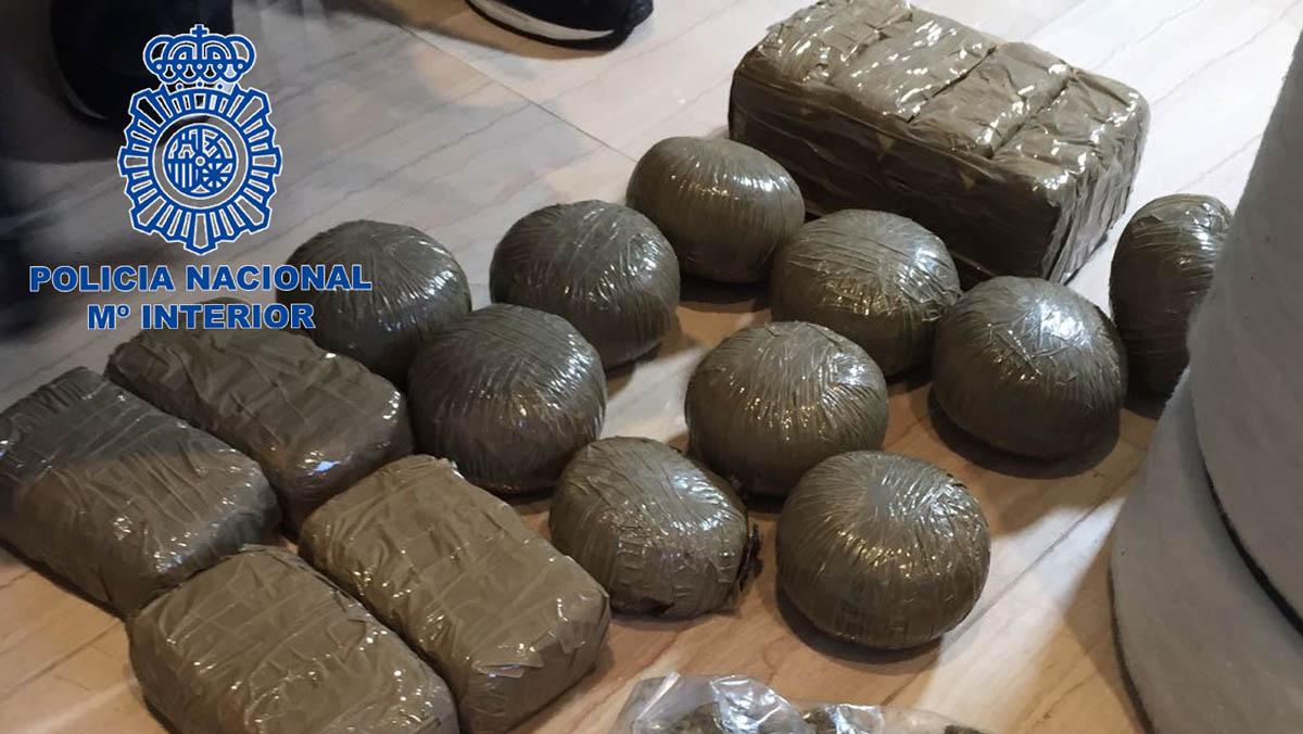 Once detenidos por tener un cultivo hidropónico con 600 plantas de marihuana