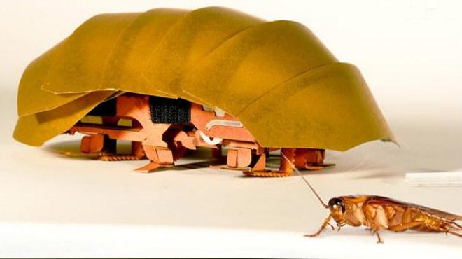 Cient�ficos norteamericanos crean un peque�o robot inspirado en las cucarachas para rescatar gente en las cat�strofes.