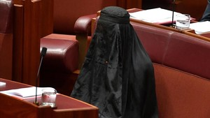 zentauroepp39715414 australian one nation party leader senator pauline hanson w170817110439