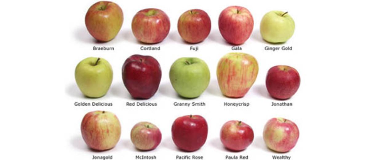 Tipos de manzanas.