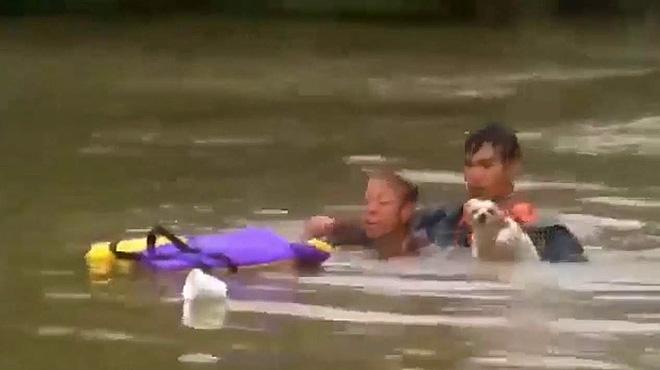 Rescatats una dona i el seu gos de morir ofegats a Louisiana