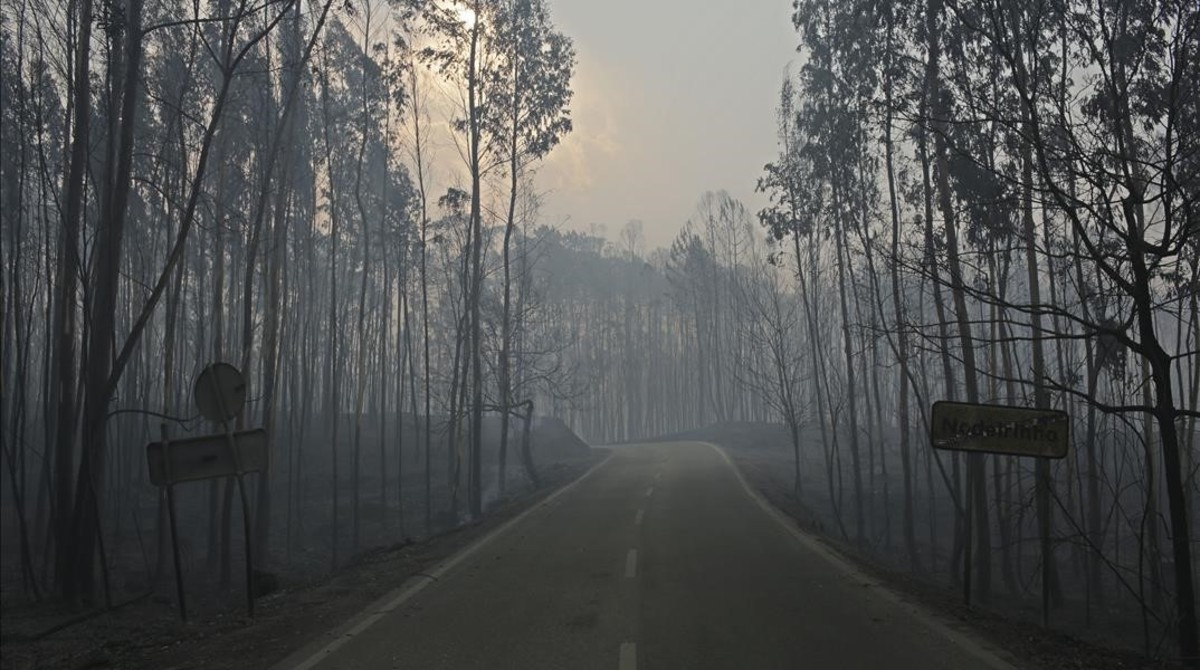 El incendio ha calcinado ya 30.000 hectáreas