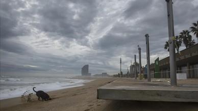 Los daños causados por el temporal en el puerto del Fòrum se elevan a un millón de euros