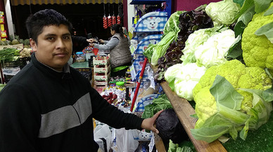 L'onada de fred a Europa desestabilitza la venda de verdures a Espanya