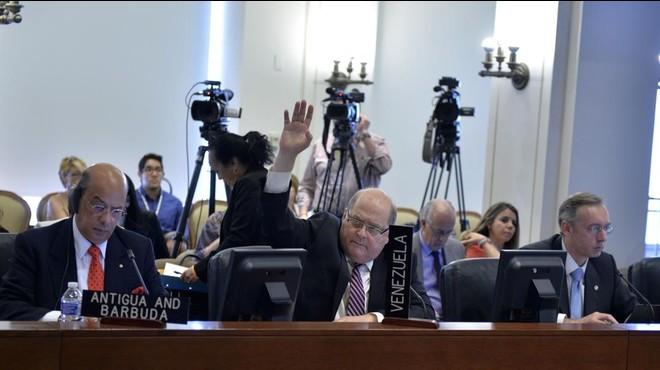 L'OEA tempera la seva resposta a la crisi de Veneçuela