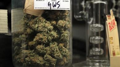 Les farmàcies de l'Uruguai ja venen marihuana legalment
