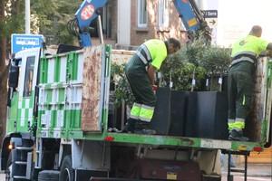 retirada-elementos-urbanos-calle-mandri-barcelona