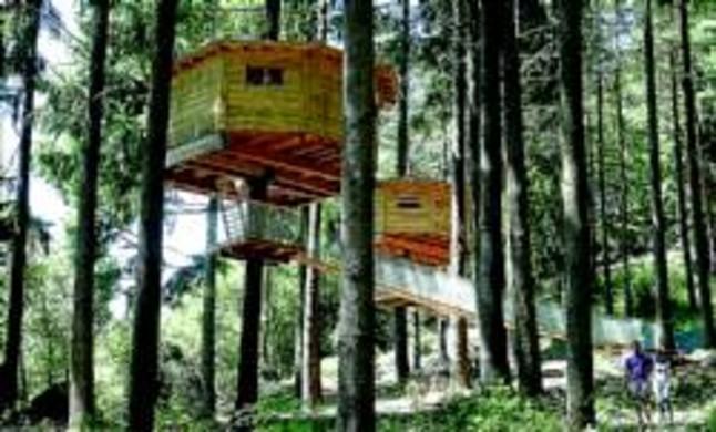 El hotel de tarz n en la selva - Casas en los arboles sant hilari ...